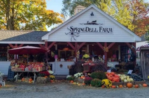 Littleton MA Front View SpringDell Farm Stand