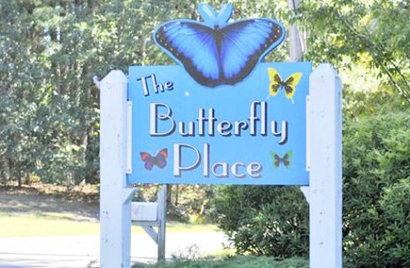 Westford MA The Butterfly Place Outside Sign